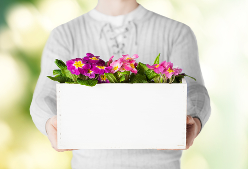 content marketing - business blog - business blog content - blog writing