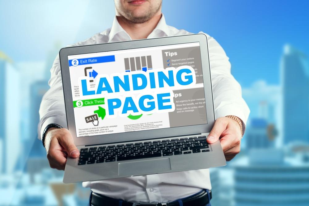 landing page content - google panda update - quality content
